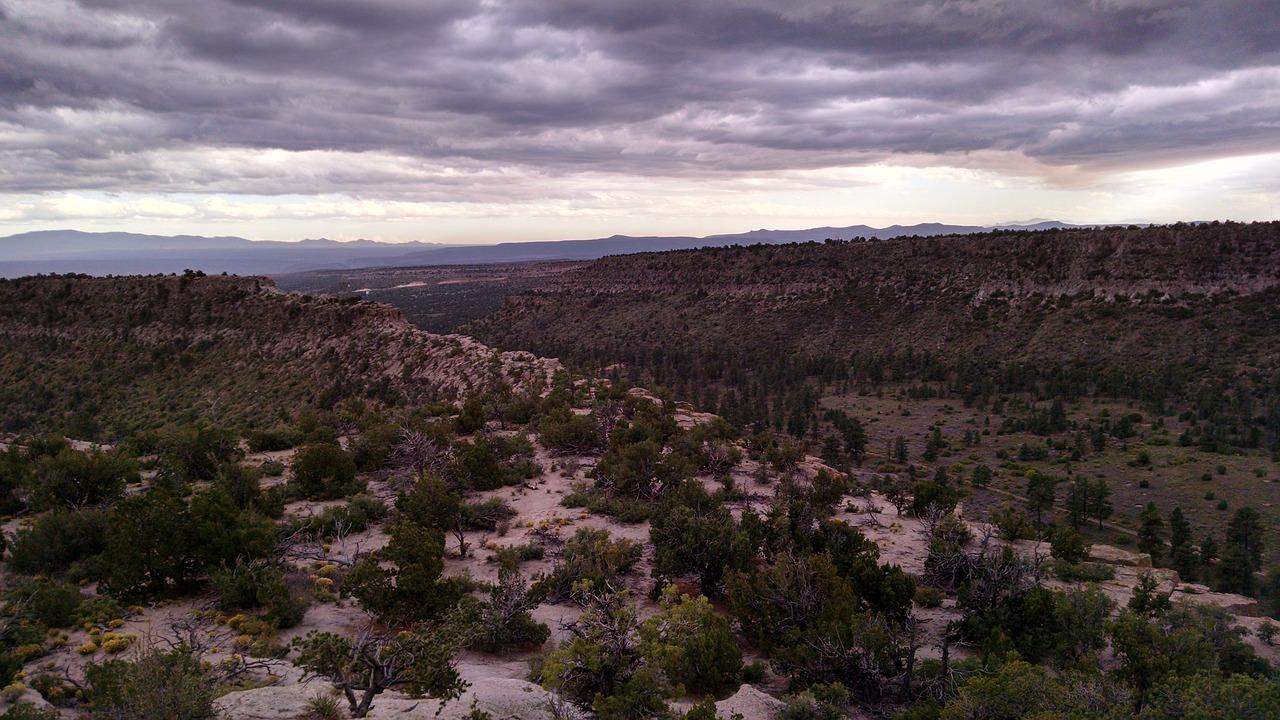 ¿Qué clima crees que tiene este paisaje?