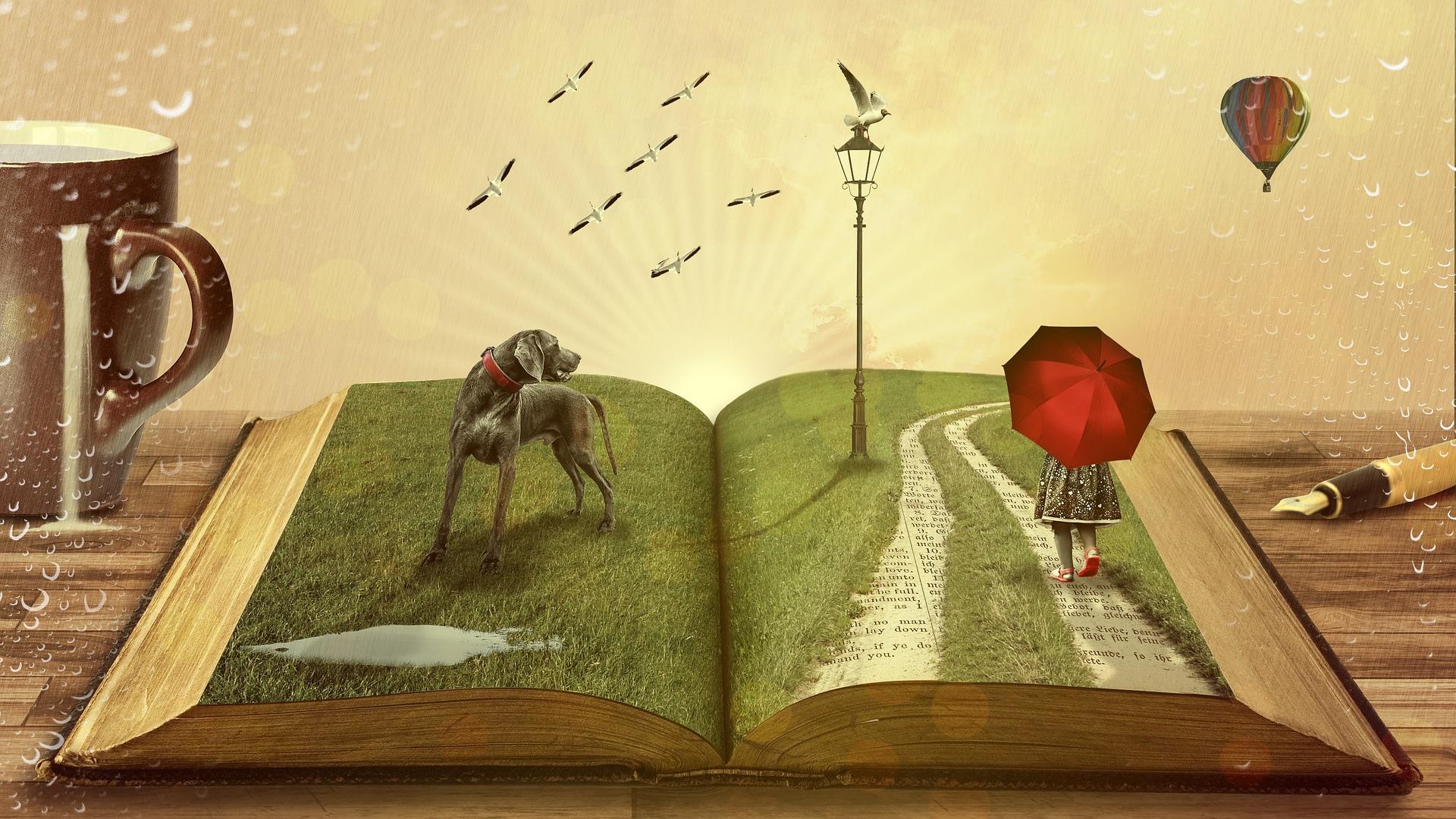 Leer nos lleva a mundos fuera de nuestra imaginación - libros de viajes
