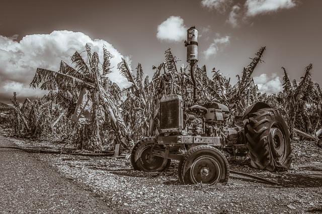 tractor en las bananeras