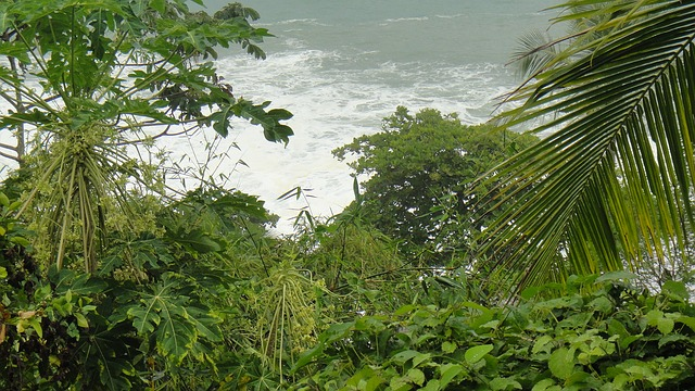 Limón - Costa Rica - rutas por costa rica